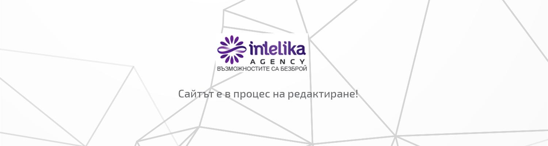 Агенция Интелика